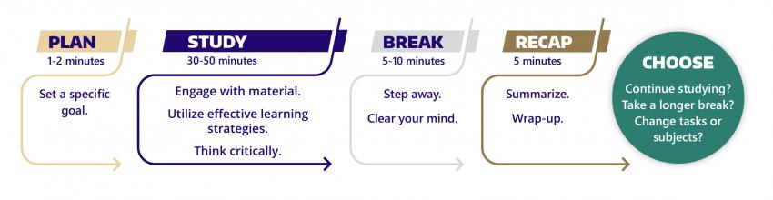 Focused Study Sessions: Plan, Study, Break, Recap, Choose