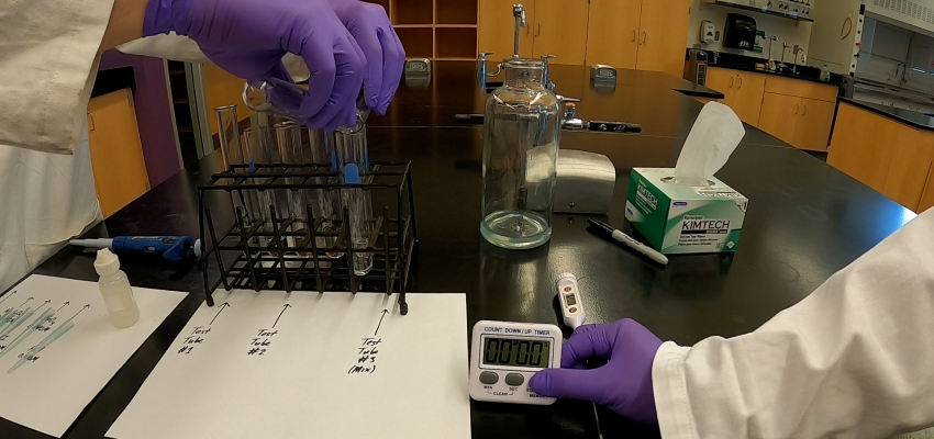 Graduate students serve as hand models in a demonstration video of mixing chemicals using a timer.