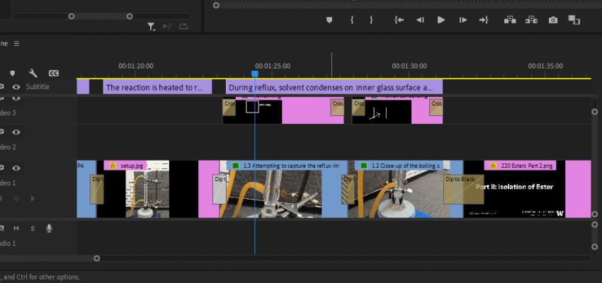 A screenshot of video editing software.