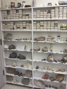 bookshelves containing mineral samples