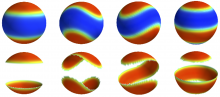 Some of the possible domain shapes of phase-separated bilayer vesicles