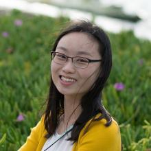 Yunshan Fan