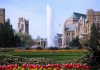 Drumheller fountain with tulips in foreground